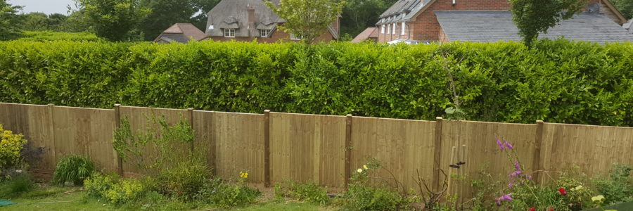 Closeboard fence on wooden posts and wooden gravelboards. On a slight incline